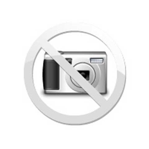 DVD Coração Selvagem - Edição de Colecionador