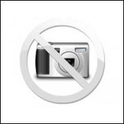 DVD Minority Report - A Nova Lei