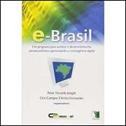 E-brasil - um Programa para Acelerar o Desenvolvimento